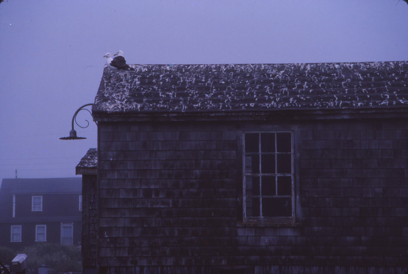 Nova Scotia 1983 - 001.jpg