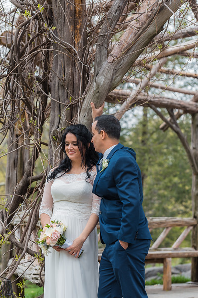 Central Park Wedding - Diana & Allen (177).jpg