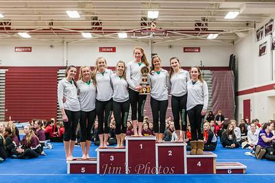 Middleton Cardinals Gymnastics - Feb 08, 2014