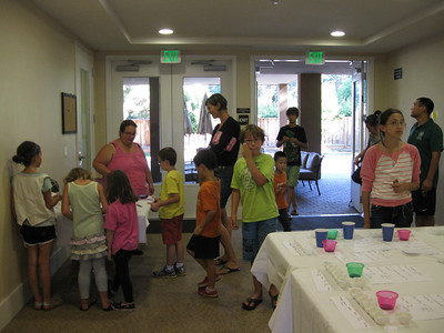 Science Mystery Party 2012