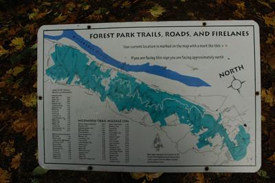 Forest Park - November 14, 2006