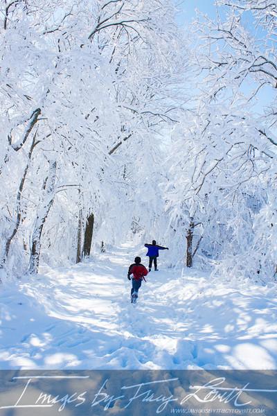 snow_3389 copy.jpg