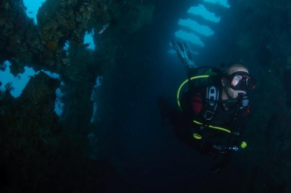 Hardeep Shipwreck Pattaya