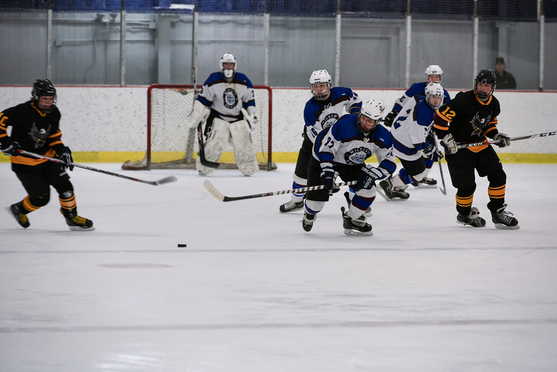 Granby Wildcat Hockey 5.jpg