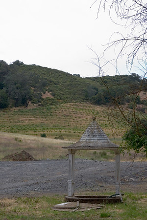 Brown Estate Winery
