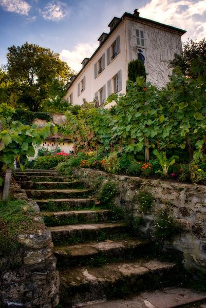 Vineyard on Montmartre