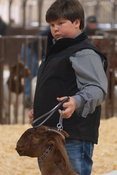 kay_county_showdown_goats_20191207-126.jpg