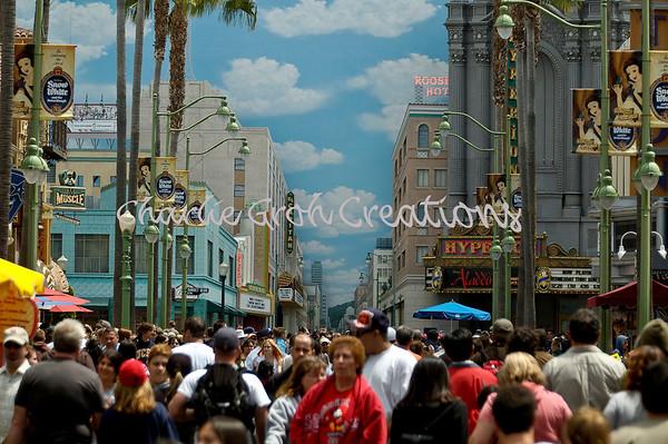 4-20-08 Disneyland Long Lens