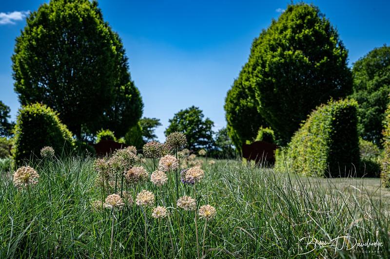 Sussex Prairie Gardens Z6-3710.jpg
