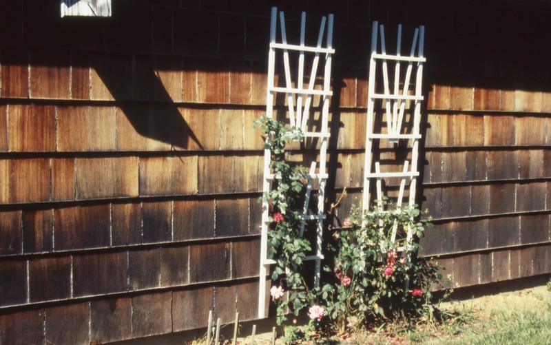 HCA-19910613-Roses 825 Briarcliff 2.jpg