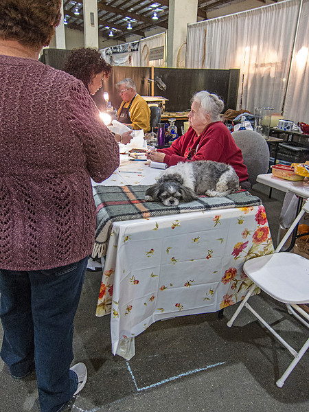 delmar antique show.jpg