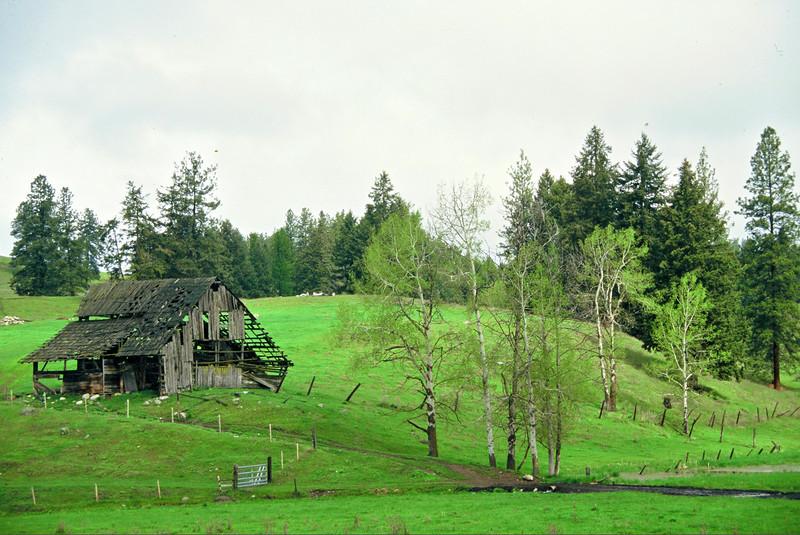 Colville, Washington  1994