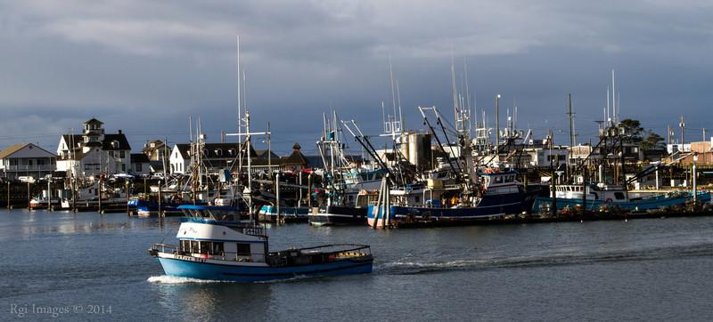 Westport Marina, Westport, WA.