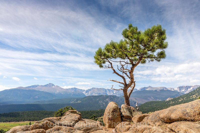 Rocky Mountain National Park-0294.jpg