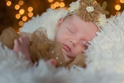 Johnson newborn shoot