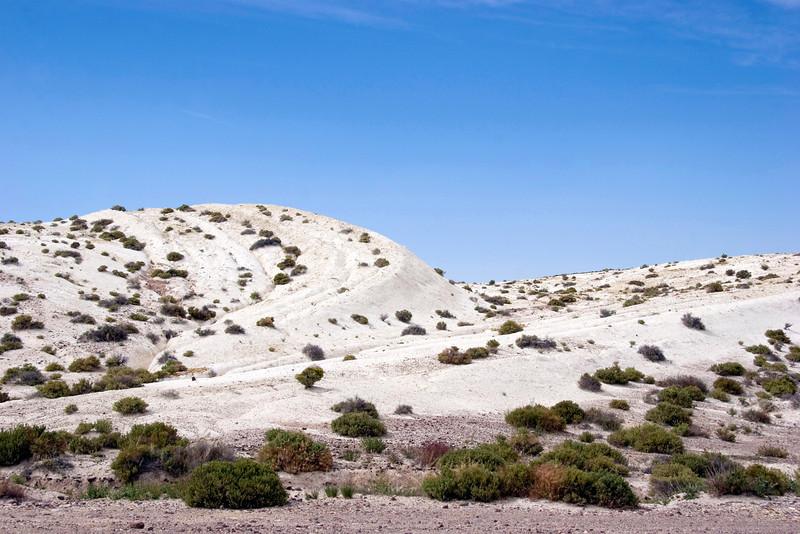 desert8 copy.jpg