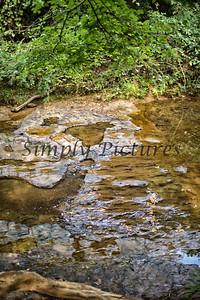 Banita Creek  (18)