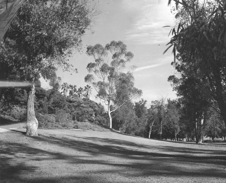 1962, Scenic Lawn