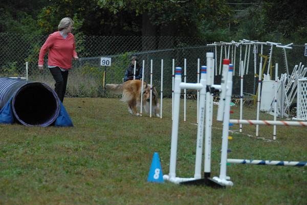 2016-10-02 CPE Dog Agility at St. Huberts