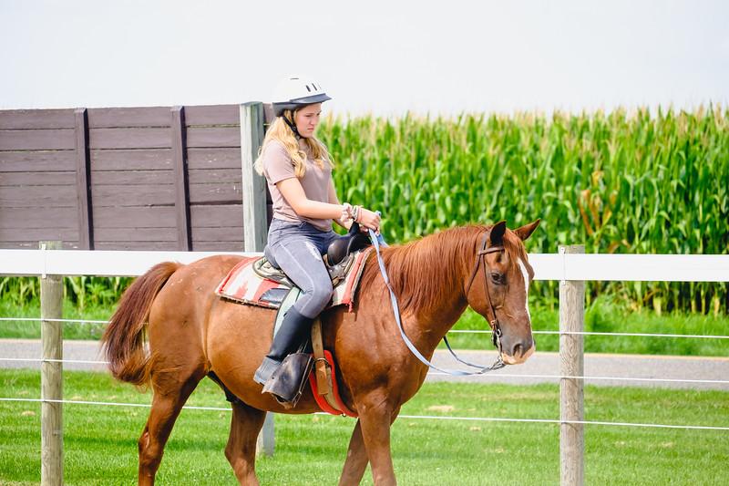 equestrian-160.jpg