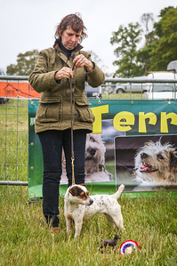 Hampshire Country Fair 2017 - Terriers