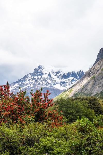 Patagonia-136.jpg