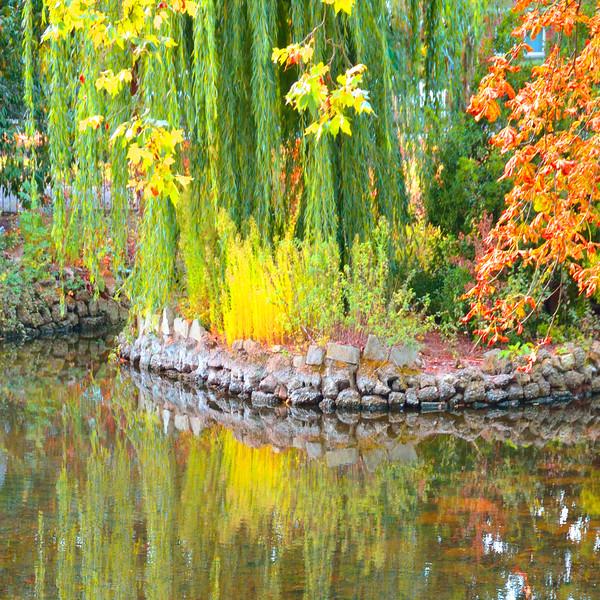 In Lloyd's Garden~7493-3sq.