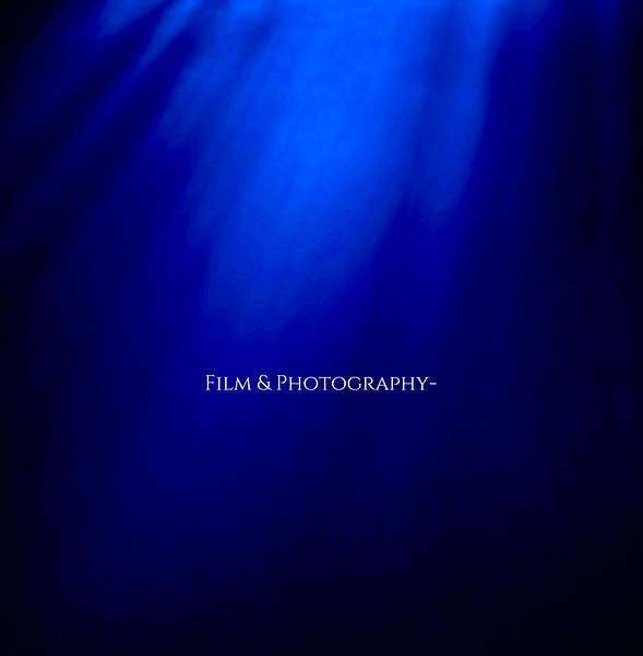 Film & Photography .jpg