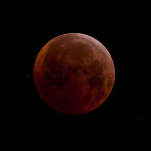 Total Lunar Eclipse of Dec 21, 2010