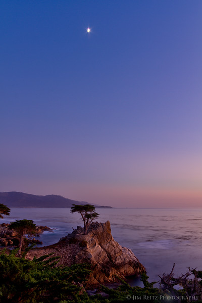 Moonrise over the lone cypress, on 17-Mile Drive.