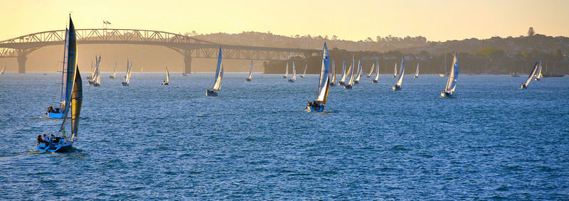 Sailing in the evening sunshine in Auckland's Waitemata Harbour, with Harbour Bridge