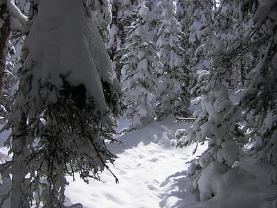 2008-04-Snowboarding