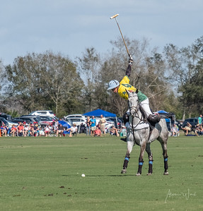 Sarasota Polo Grounds
