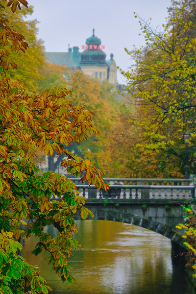Fyris Autumn