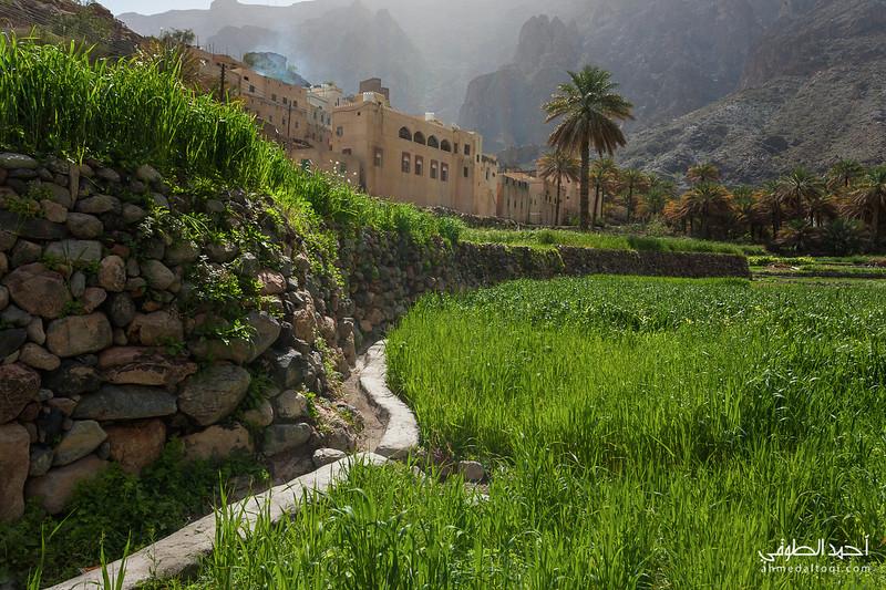 Oman (177).jpg