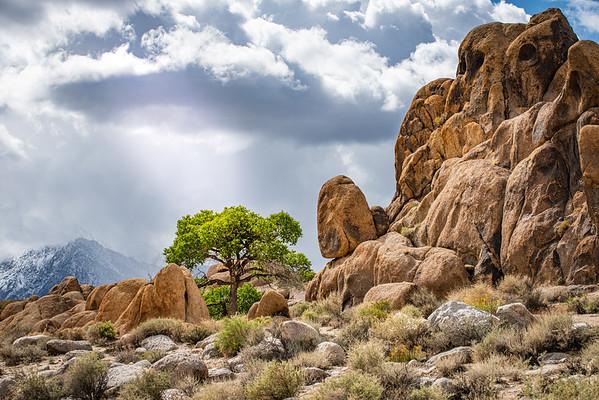 The Great Basin II: Eastern Sierra Nevada