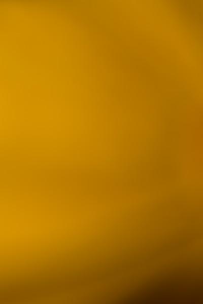 Colour Washes BH5A7082.jpg