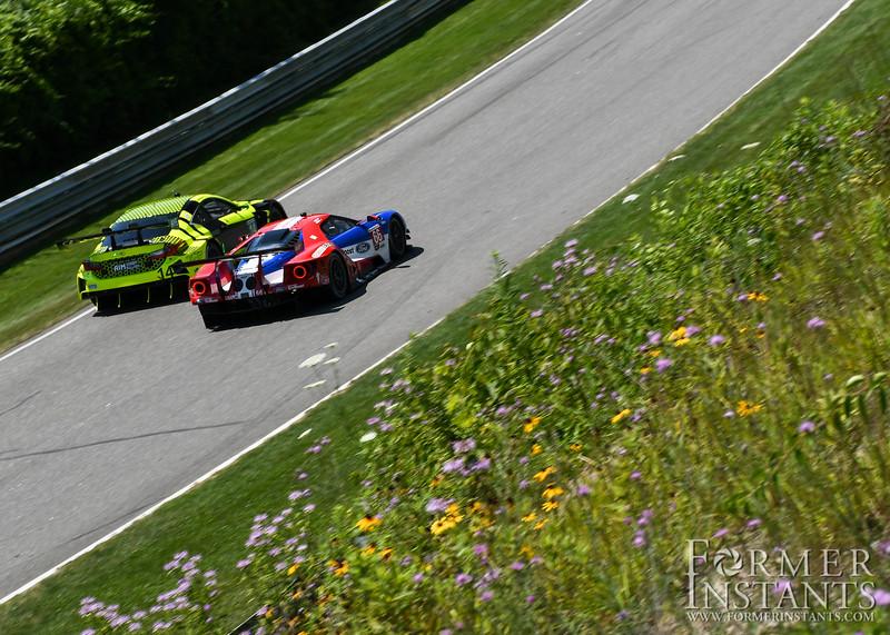 Wildflowers & Racecars