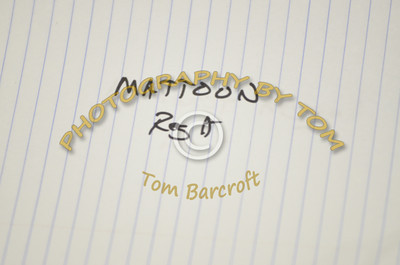 Mattoon HS