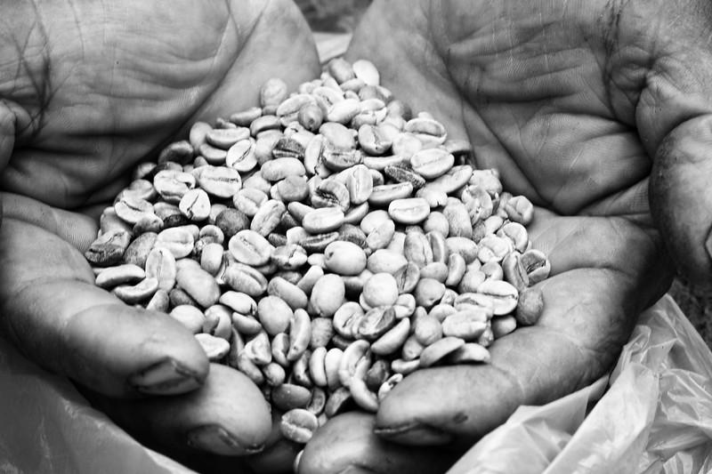 cunes-coffee-beans_4809746018_o.jpg