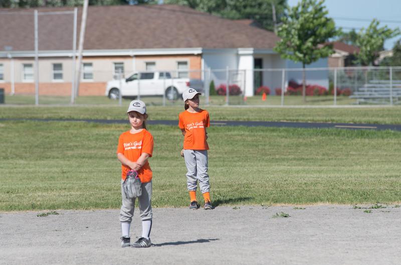 06.08.2016 - Tiger Baseball Photos - Mini Marauders 8U - Team Orange-4541.jpg