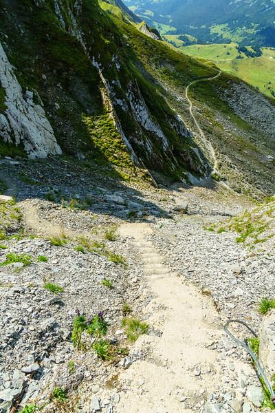 A staircase on a trail above Interlaken, Switzerland.