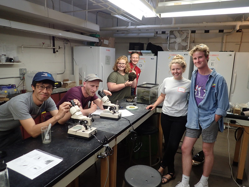 Visiting scientist Ichiro Matsuzaki, grad student Vince Butitta, undergrads Sydney Sobon and Samantha Schiereck, and grad student Emily Whitaker helping out in the  Zooplankton station