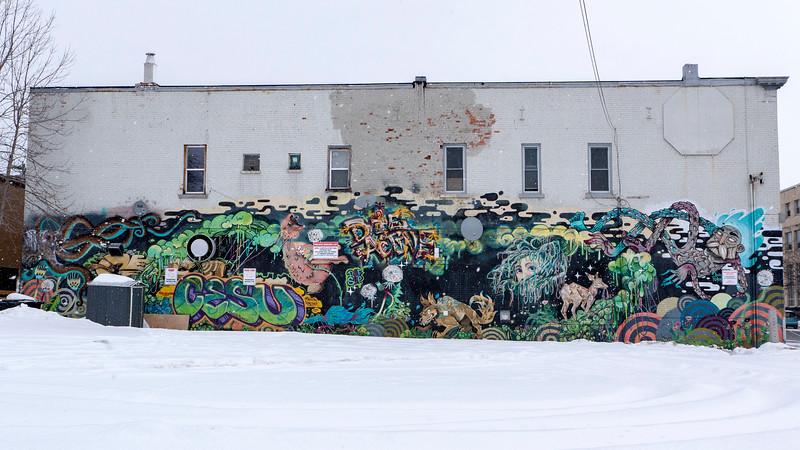 Thunder-Bay-Street-Art-20.jpg