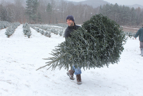 Bunny Acres, Christmas Tree Farm - Bethel