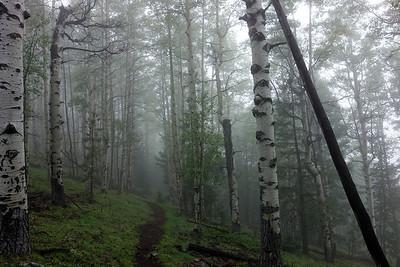 Mount Taylor (September 27, 2013)