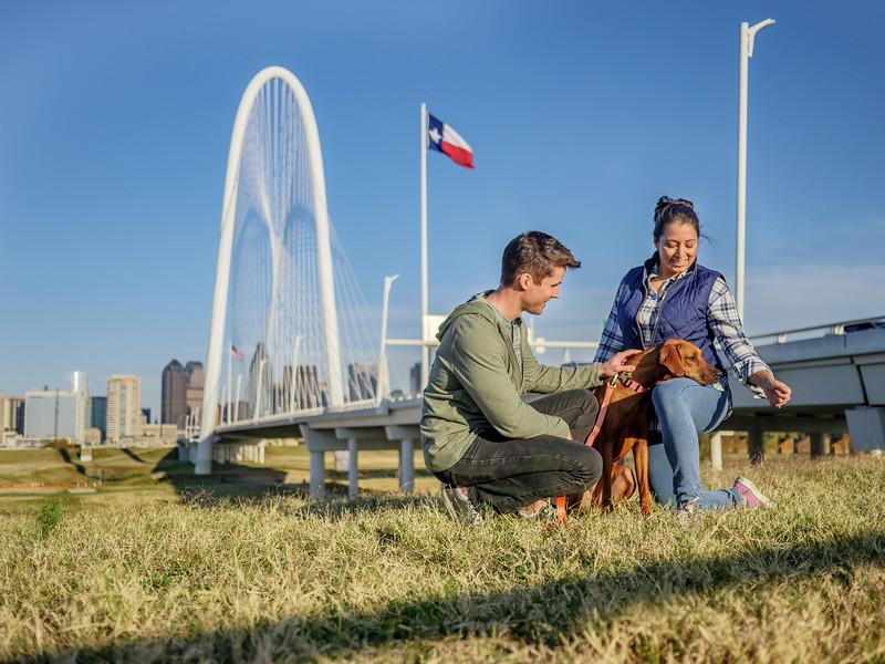 113017_11919_Bridge Skyline_Walk Dog.jpg