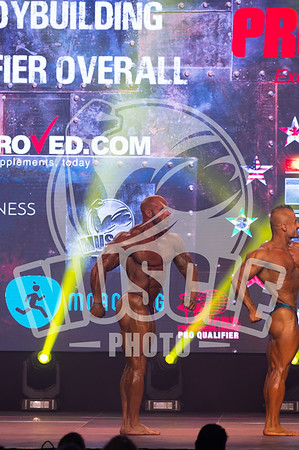 Pro Qualifier Bodybuilding Overall