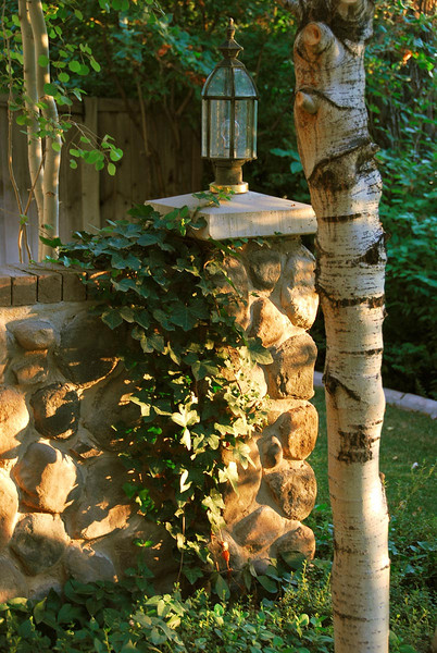7/21/07 – This is a wing light in our front yard. I love the way the ivy grows on it and the late evening sun casts a warm glow across the stones.