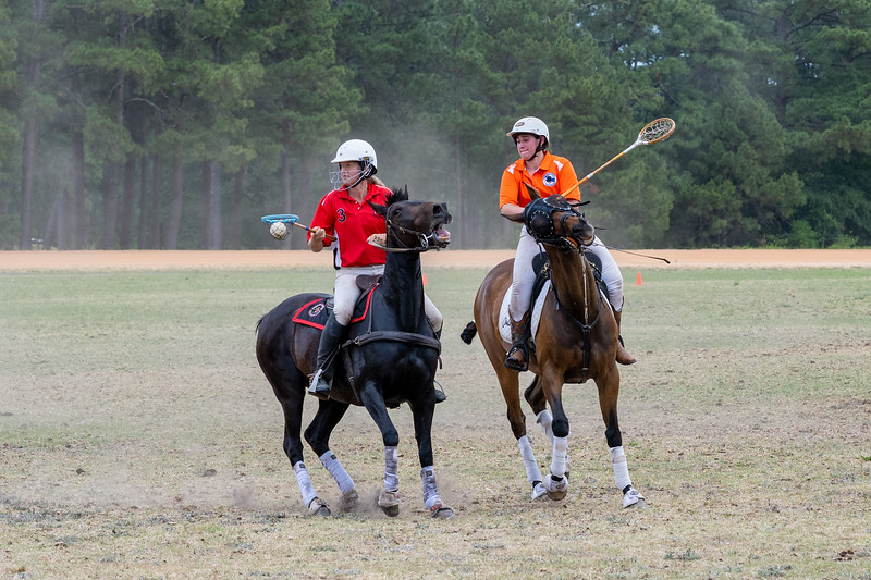 Polocrosse In the Pines